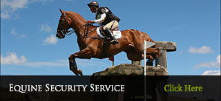 Equine Security Service